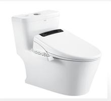安华卫浴 马桶智能盖板 马桶盖板 电盖板 (限5套)