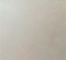 龙踞坊肌理壁膜 艺术质感系列