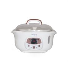 天际 DGD18-18DG隔水炖陶瓷电炖锅