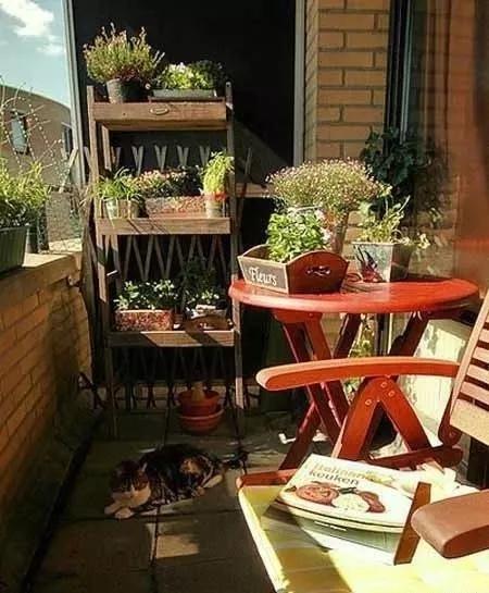 有家,有阳台,有生活!